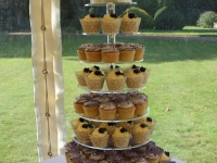 Shona and Andrew's Rose Wedding Cupcake Tower