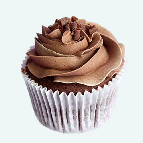 Double Chocolate Cupcakes